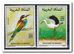 Marokko 1991, Postfris MNH, Birds - Marokko (1956-...)