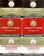 1205 - Italie - Modena - Lot 6 étiquettes Différentes De Lambrusco - Contessa Matilde - Vinicola Modenese - Vino Blanco