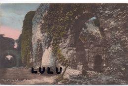 ANGLETERRE : The Corridor Abbey Ruins Reading - Reading