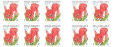 BELGIUM, 2001, Booklet 40, Tulip Darwin.10x52c,  Mi 3096 - Booklets 1953-....