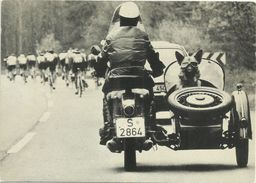 AK Motorrad Mit Beiwagen Und Hund Mit Brille Bei Radrennen #2374 - Motorbikes
