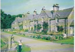 England Northumberland Cambo Village Scene