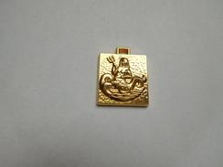 Belle Médaille ( No Pin's ) , Neptune - Pins