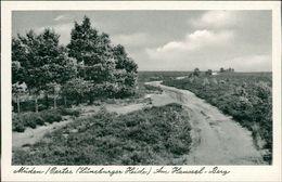 AK Faßberg Müden, Am Haussel-Berg, Ca. 1950er Jahre (10287) - Duitsland