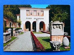 Cartolina Oderzo - Museo Civico - 1965 Ca. - Treviso