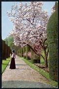 A7570 - Alte Künstlerkarte - Farbfoto - Landschaft - Hans Hildenbrand Nr. 1214 - Ansichtskarten