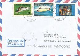 Centrafrique RCA CAR 2000 Bangui Chrysichthys Claroteid Catfish Freshwater Eutropius Fish Water FAO Cover - Centraal-Afrikaanse Republiek