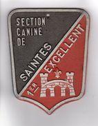 PLAQUE DE CONCOURS CANIN  SECTION CANINE DE SAINTES 1er EXCELLENT - Autres Collections
