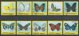 Manama. #O (U) Butterfly - Manama