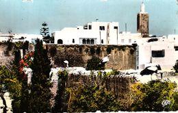 MAROC - RABAT LES OUDAIAS LES CIGOGNES - Rabat