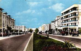 MAROC - RABAT AVENUE MOHAMED V - Rabat