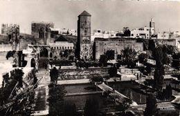 MAROC - RABAT JARDIN DES OUDAIAS - Rabat