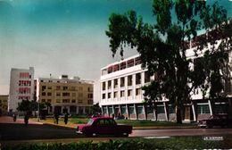MAROC - PORT LYAUTEY - PLACE ALBERT 1ER - Rabat