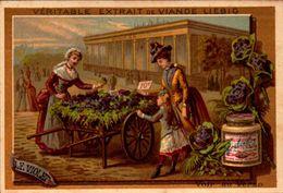 Chromos - LIEBIG - Le Violet - Marchande De 4 Saison - S170 - Bill-691- R/v - 2 - Liebig
