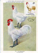 27245 Albania, Maximum 1968, Hahn, Coq   Rooster - Albanien