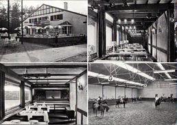 !  Ansichtskarte Genk, Limburg, Pferde, Ruitersport, Horses - Genk