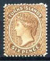 Turks And Caicos Islands, 1889, Queen Victoria, Watermark 3, Dent. 14, MH, Michel 27I - Turks & Caicos (I. Turques Et Caïques)