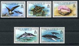 Turks And Caicos Islands, 1979, Nature Conservation, Birds, Turtles, Shells, Fish, MNH, Michel 425-429 - Turks & Caicos (I. Turques Et Caïques)