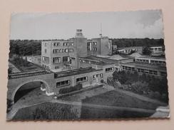 PULDERBOS St. Jozefspreventorium ( Thill ) Anno 1955 ( Zie Foto Details ) ! - Zandhoven