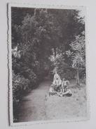 Pensionnat Du Sacré-Coeur Frameries-lez-Mons ( Thill ) Anno 19?? ( Zie Foto Details ) ! - Frameries