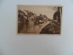 Moerbeke - Waes  :  Kanaalzicht - Moerbeke-Waas