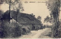 Meerhout Zicht In Genepas - Meerhout