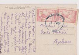 V19  >  SLOVENIA  --  VERIGARI, CHAINBREAKERS  --   POSTCARD _.  VIOLA ODORATA, BLUMEN  --   1920 - Slowenien