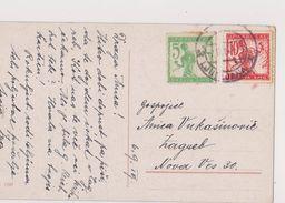 V21  >  SLOVENIA  --  VERIGARI, CHAINBREAKERS  --  STEMPEL LJUBLJANA  _ POSTCARD _.  BOY WITH DOG  --   1919 - Slowenien