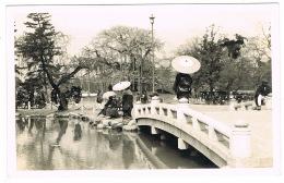 RB 1170 -  1921 Real Photo Postcard - - Kyoto Park - Japan - Kyoto