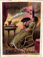 1 Postcard  F.Wolff & Sohn  Karlsruhe  Kiefern-Wald-Luft Im Zimmer - Litho - Agent DOBBEL STATIONkaai - EXPO 1894 ANVERS - Antwerpen