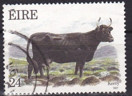 Ireland (1987):- Flora & Fauna 10th Series/Cattle/Kerry Cow (24 P):- USED - Used Stamps