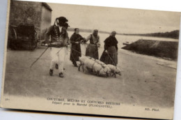 29 PLOUGASTEL - COUTUMES, MOEURS Et COSTUMES BRETONS N° 467 - Départ Pour Le Marché - Animée, Cochons - Plougastel-Daoulas