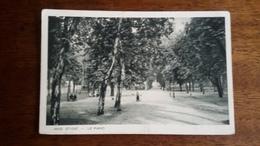 CPA 88 - ST DIE - Le Parc - Saint Die