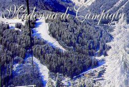 Madonna Di Campiglio - La Pista Tre Tre Vista Dal Monte Spinale - Formato Grande Viaggiata – Ar - Italia