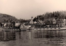 Photo Originale Bateau Touristique à Roues - Le Bad-Schadau En 1960 Sur Le Rhin - Pirna - Barche