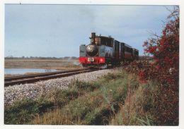80 - Chemin De Fer De La Baie De Somme   Gare De St-Valéry       031 T Buffaud Robatel - Saint Valery Sur Somme