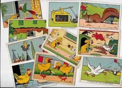 Lot 942 De 10 Chromos Benjamin RABIER Pas Cartes Postales Déstockage Pour Revendeurs Ou Collectionneurs - 5 - 99 Cartes
