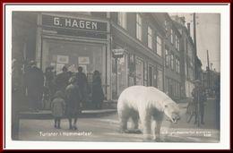 ★★ HAMMERFEST. G. HAGEN ★★ HAMMERFEST. NORTH NORWAY ★★ - Norvège