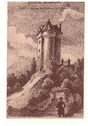 63 - VIEILLE AUVERGNE . RUINES DU CHÂTEAU DE PALMONT - Réf. N°4646 - - France