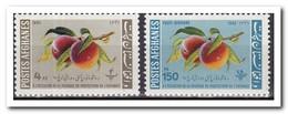 Afghanistan 1962, Postfris MNH, Fruit - Afghanistan