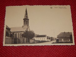 VIANE   -   Buitenzicht  Kerk  -  L' Eglise De Viane - Geraardsbergen
