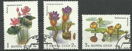 URSS 1984  Flores Aquaticas Aquatic Flowers - Pflanzen Und Botanik