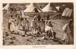 CPA MAROC. Soumission D'une Tribu. - Morocco