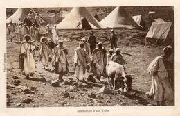 CPA MAROC. Soumission D'une Tribu. - Marruecos