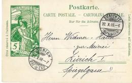 45 - 79 - Entier Postal UPU 5cts Avec Cachets à Date De Zürich - Attention Petit Trou - Ganzsachen