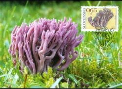 337-338 SLOVAKIA-Pilze-Mushrooms-Champignons-Funghi-Hongos, Carte-Maximum á 1.500 Pcs 10/2017 - Pilze