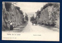 Vallée De La Lesse. Route De Vignée.  Ca 1900 - Houyet