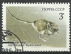 URSS 1985 Mi:SU 5538, Sn:SU 5389, Yt:SU 5241 - Roedores