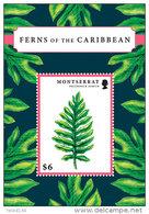MONTSERRAT  MINT N.H SCOTT # ?? ; IGPC 1207 SS  ( FLOWERS ; FERNS - Montserrat