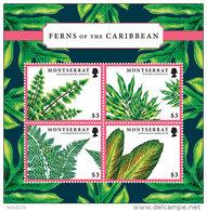 MONTSERRAT  MINT N.H SCOTT # ?? ; IGPC 1207 SH  ( FLOWERS ; FERNS - Montserrat
